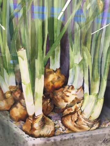 Photo of Paperwhites, a painting by Mary Selinski